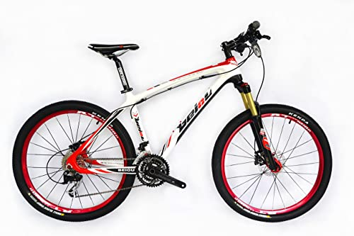 BEIOU Carbon fiber Mountain Bike complete bike MTB bike BOCBM05A review