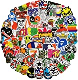 Cool Stickers for Skateboard, Vinyl Water Bottle Laptop Computer Phone Notebook Luggage Guitar Skateboard Decal 100Pcs…