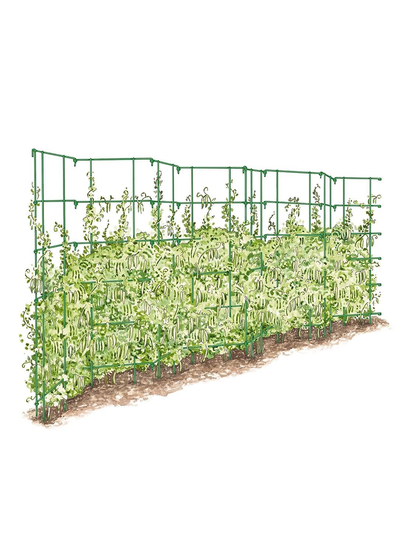 Amazon Gardener s Supply pany Expandable Pea Trellis