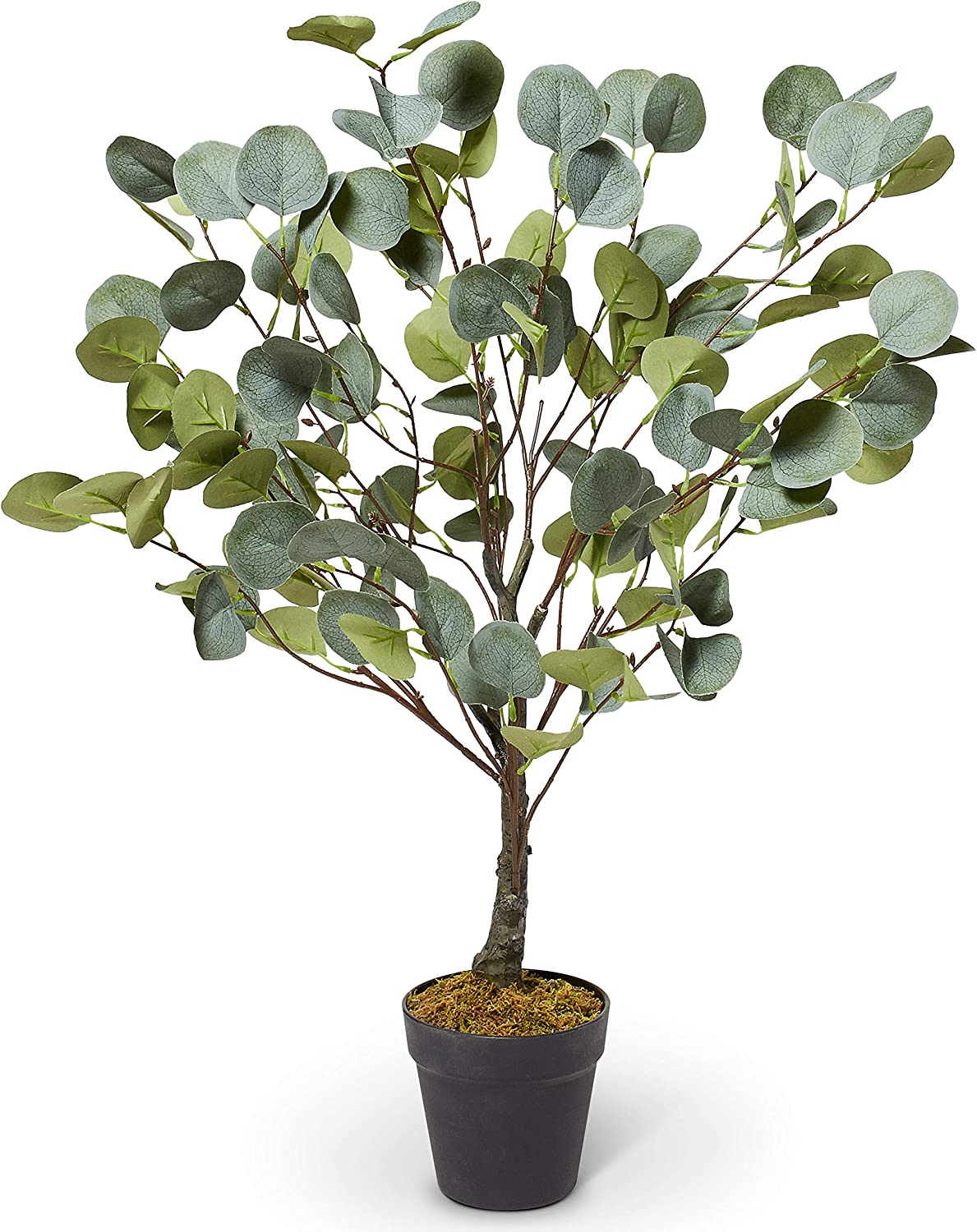 Winvictory Dynamic Concepts, Potted Eucalyptus Tree, Faux Plant in Pot, Artificial Greenery, Office Plants, Tall, Farmhouse Decor, Artificial Potted Plant, Silver Dollar, Office/Kitchen Plant-