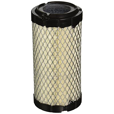 Donaldson P822686 Filter (Pack of 2): Automotive