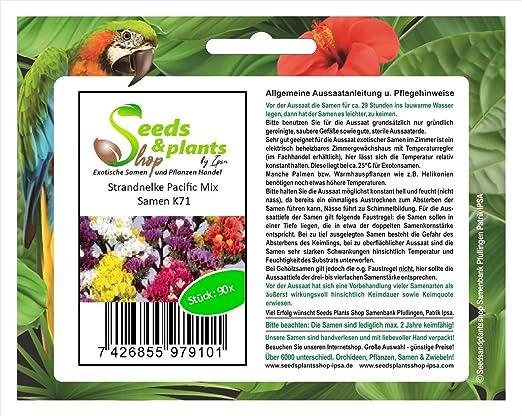 90 novedad de semillas frescas de mar Pacífico mezcla semillas ...