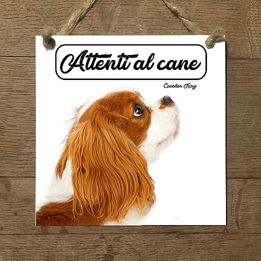 Cavalier King Mod 3 cuidado con el Perro matrícula azulejo ...