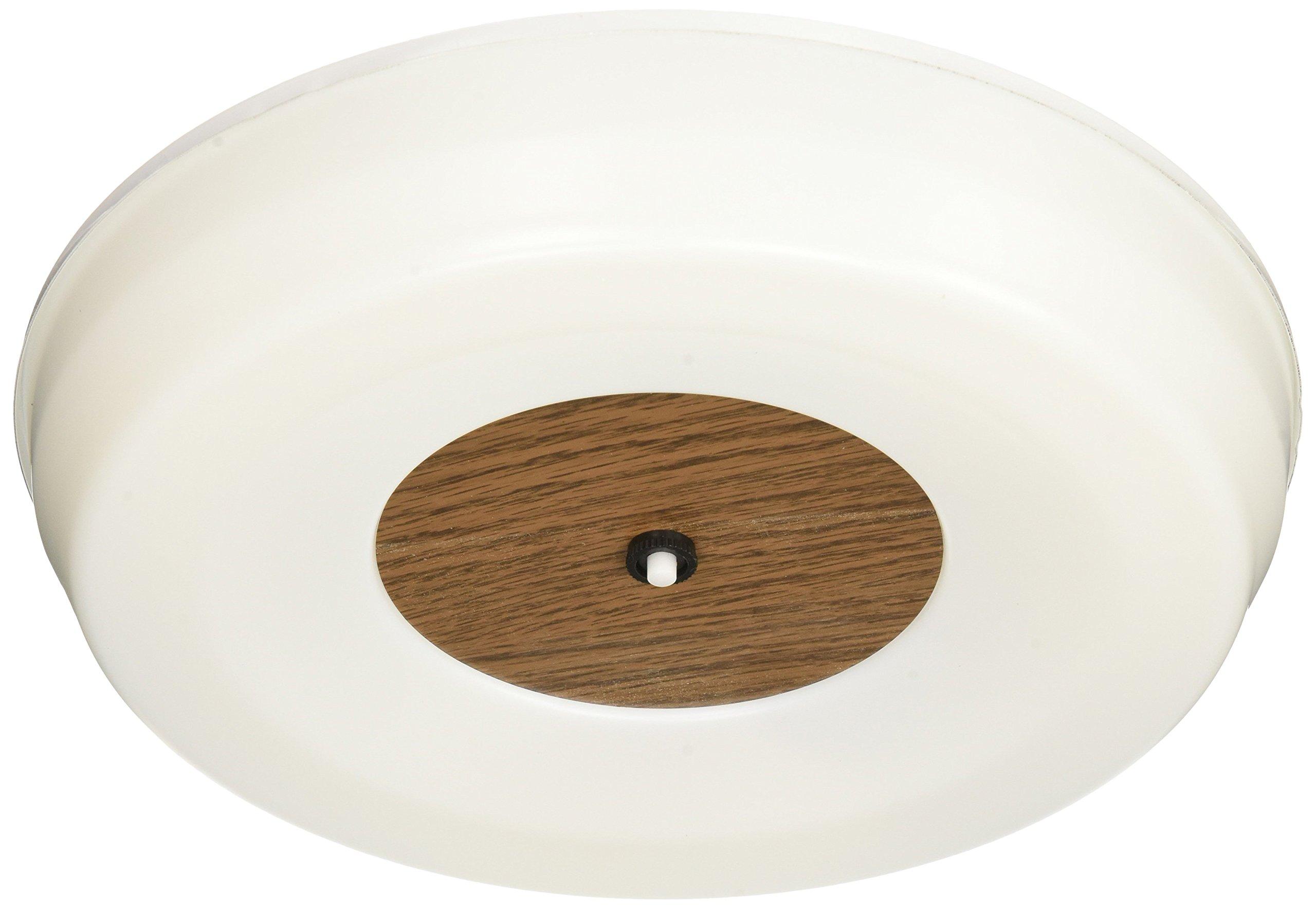 Thin-Lite 109C Fluorescent Circline Light Fixture
