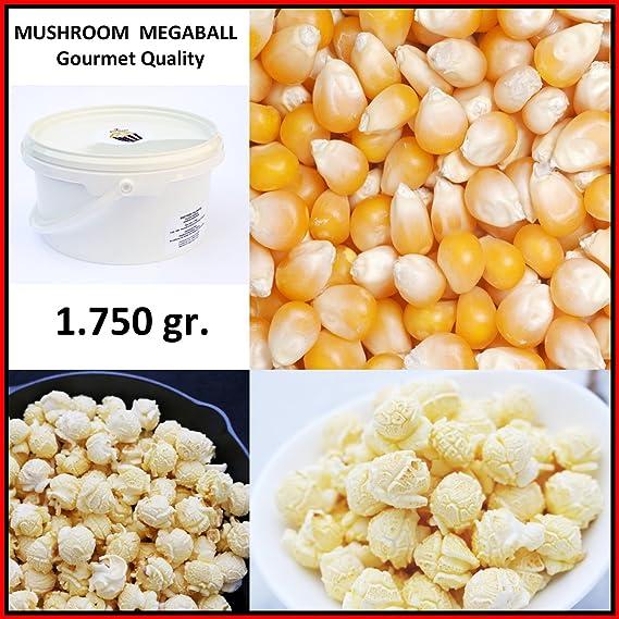 Palomitas de Maiz MUSHROOM MEGABOLA Redondas XXL 1:60 ...