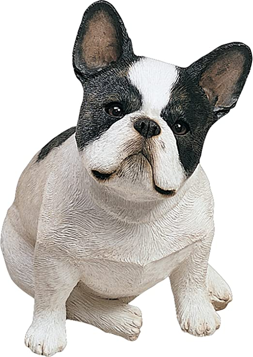 Sitting Sandicast Mid Size Boston Terrier Sculpture