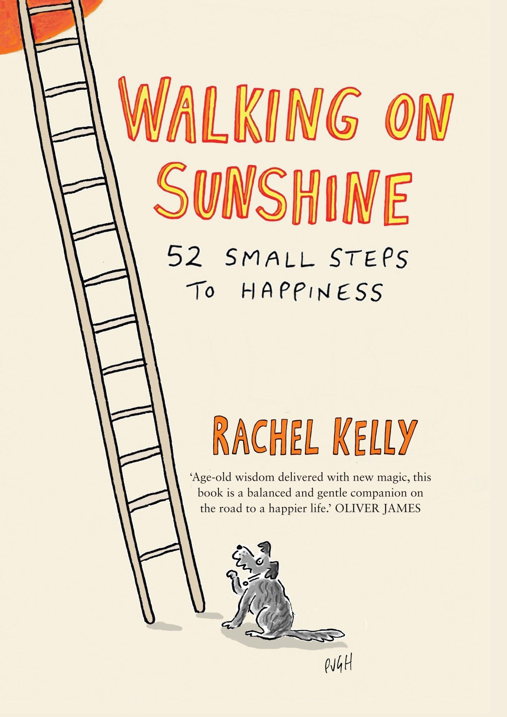 Walking on Sunshine 52 Small Steps to Happiness Amazon