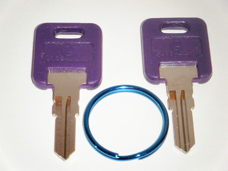 GLOBAL LINK Purple RV Keys G301 to G350 RV Motorhome Trailer Purple Keys Cut Replacement Keys with Blue Key Ring FIC G301