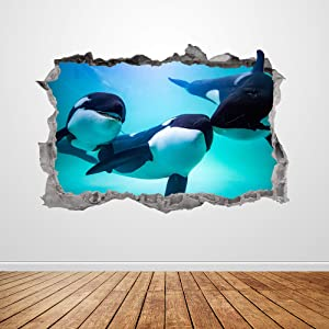 Killer Whale Wall Decal Smashed 3D Graphic Orca Wall Art Stickers Mural Poster Kids Room Bedroom Decor Gift