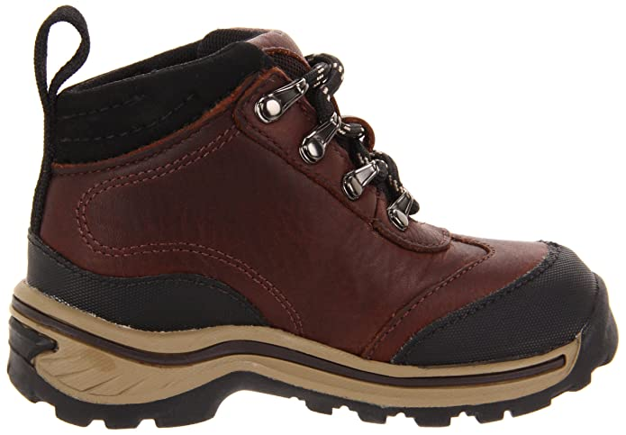 845172c322 Amazon.com   Timberland Back Road Hiker Boot (Toddler/Little Kid)   Hiking  Boots