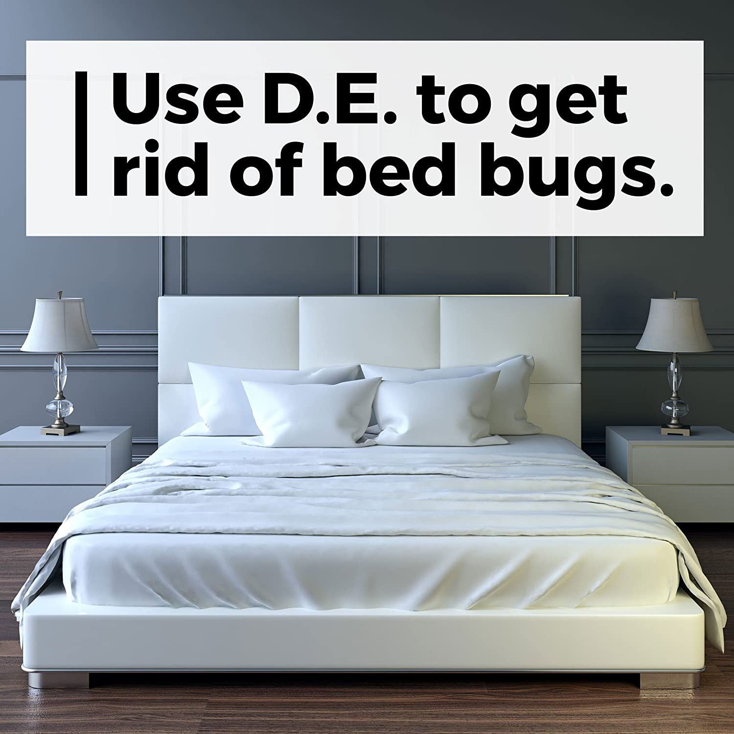 Amazon.com : Safer Brand 51703 Diatomaceous Earth Bed Bug, Flea and ...