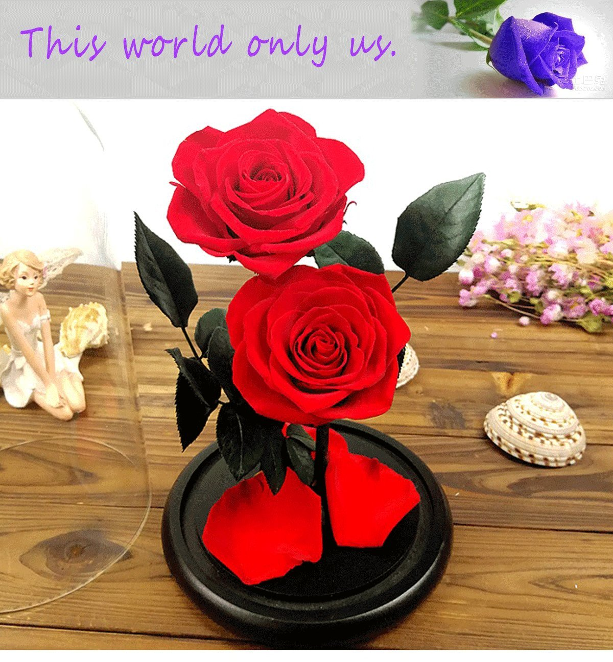 Baobab's wish Preserved Fresh Flower,Enchanted Rose,Natural Eternal Life Rose in Glass Dome Cover with Gift Box for Valentine's Day, Mother's Day, Anniversary, Birthday, Wedding (Royal Blue) Mother' s Day feiliya