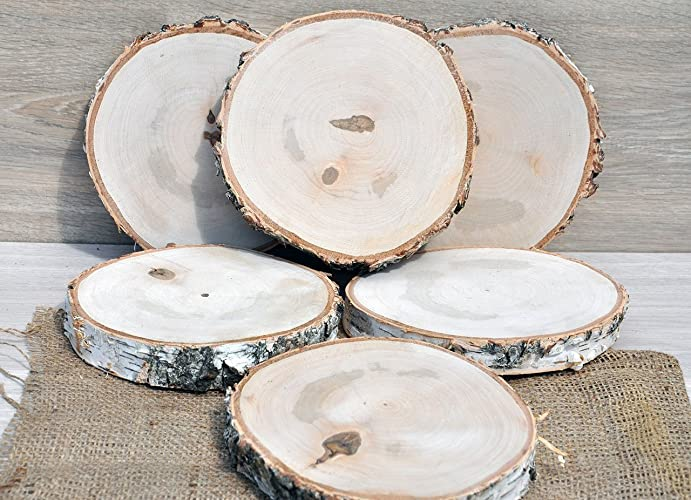 Amazon set of six 65 birch wood slices for wedding set of six 65 birch wood slices for wedding centerpieces wooden coasters wood centerpieces junglespirit Gallery