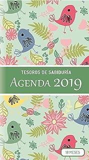Amazon.com: Agenda semanal 2018: Fácilmente y delgado para ...