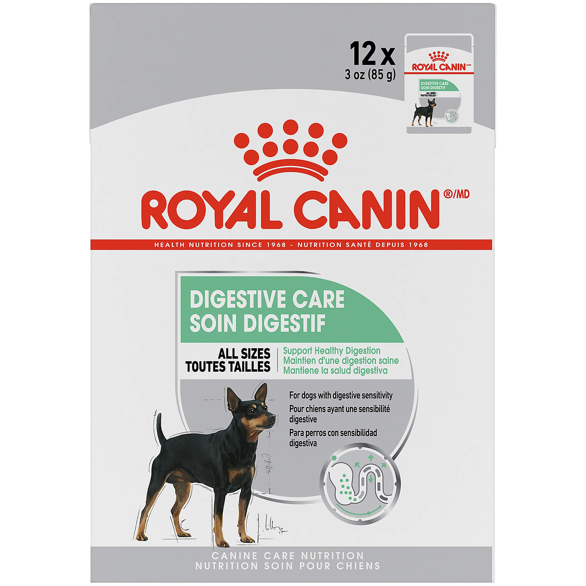 Royal Canin Canine Care Nutrition Digestive Care Loaf in Gravy Dog Food, 3 Ounce Pouch (Pack of 12) by Royal Canin