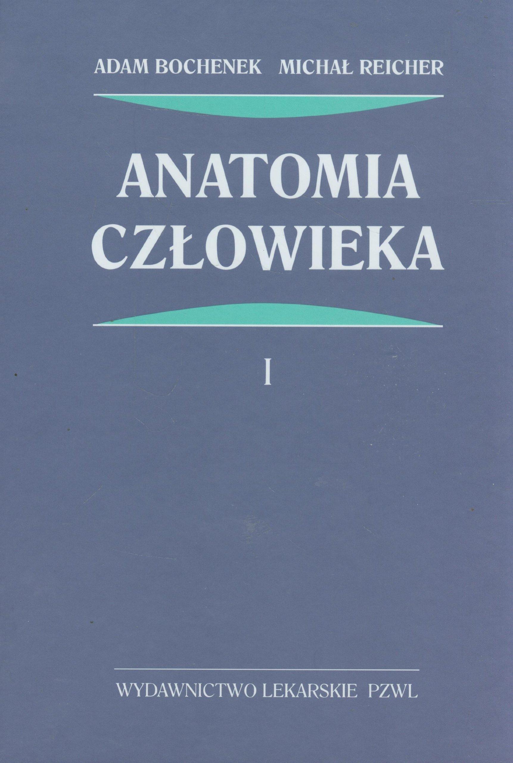 Anatomia czlowieka Tom 1: Amazon.es: Adam Bochenek, Michal Reicher ...
