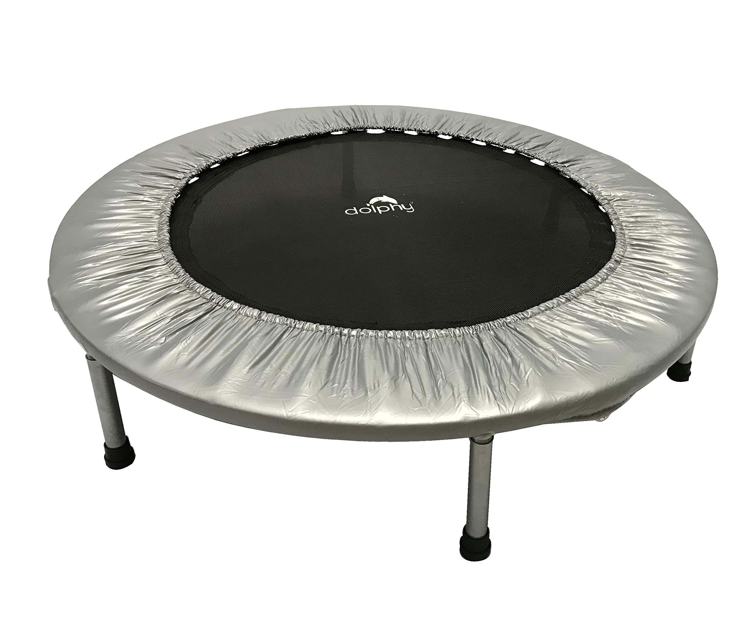 Dolphy Indoor/Outdoor Trampoline (40 Inches, Silver and Black) (B07HTN3LL7) Amazon Price History, Amazon Price Tracker