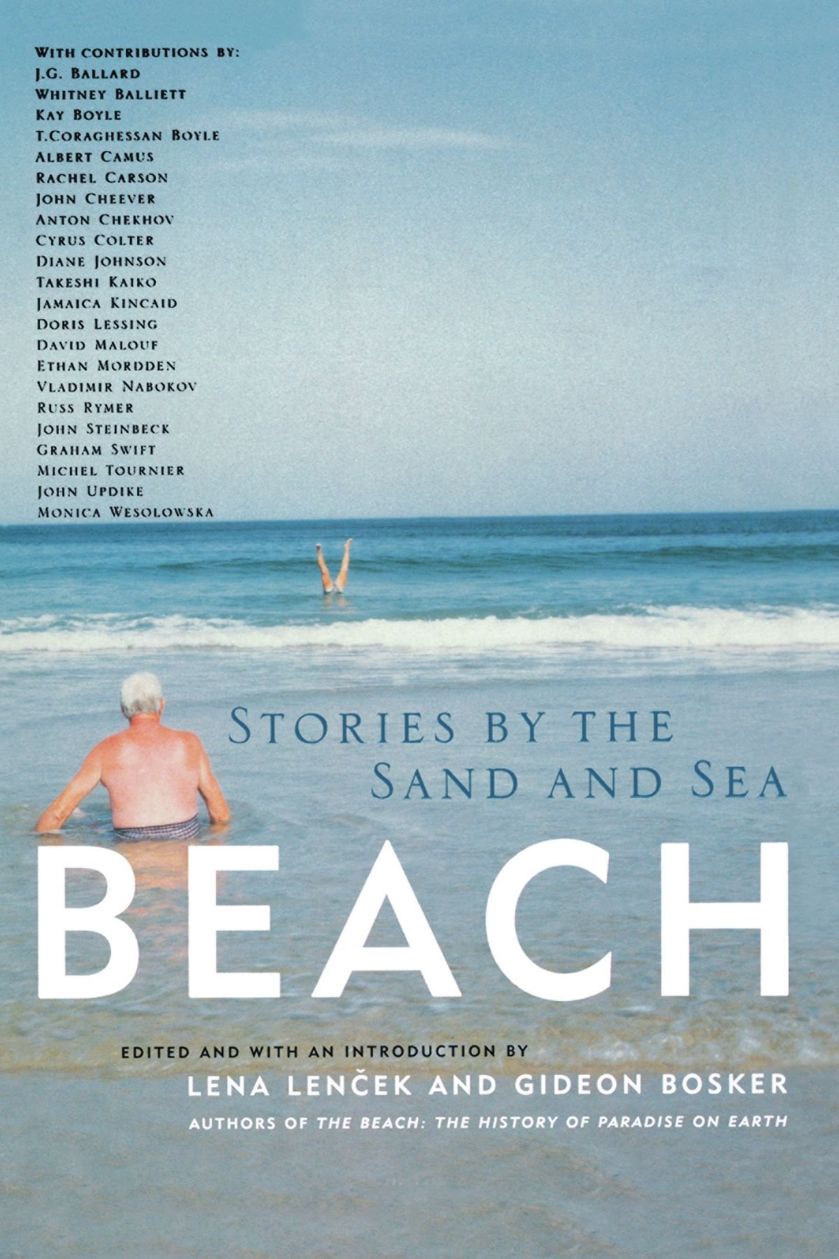 Beach : Stories By The Sand And Sea: Lena Lencek, Gideon Bosker:  9781569246368: Amazon: Books