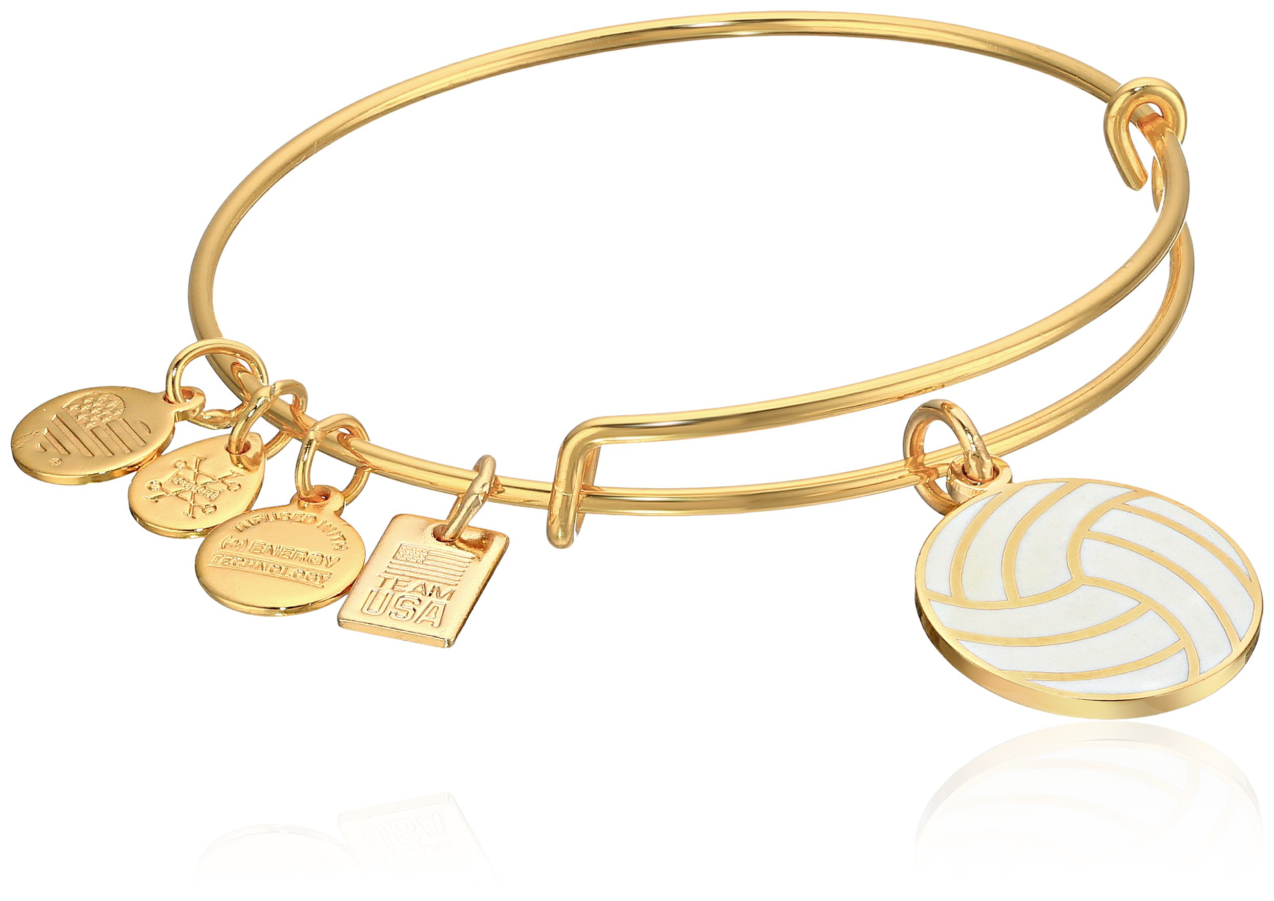Alex and Ani Women's Team USA Volleyball Bangle Gold-Tone One Size