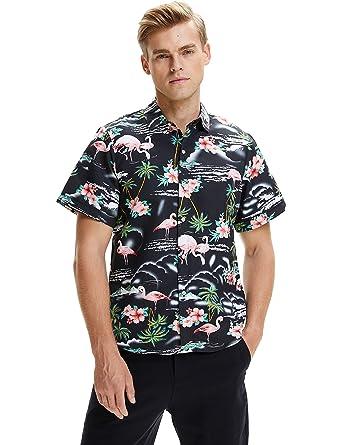 742223593 SSLR Men's Flamingos Casual Short Sleeve Aloha Hawaiian Shirt (XX-Large,  Black)