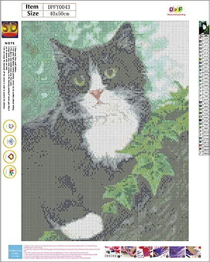 Diamond Painting Kits for Adults Diamond Art 5D Paint with Diamonds DIY Painting Kit Cat Words Paint by Number with Gem Art Drill and Dotz 11 x 14