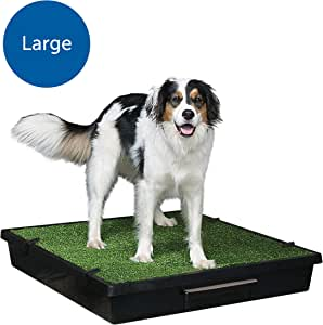 PetSafe Pet Loo - Large Portable Toilet for Dogs and Pets, Compact, Hygienic for Indoor Use, with Grass Pad