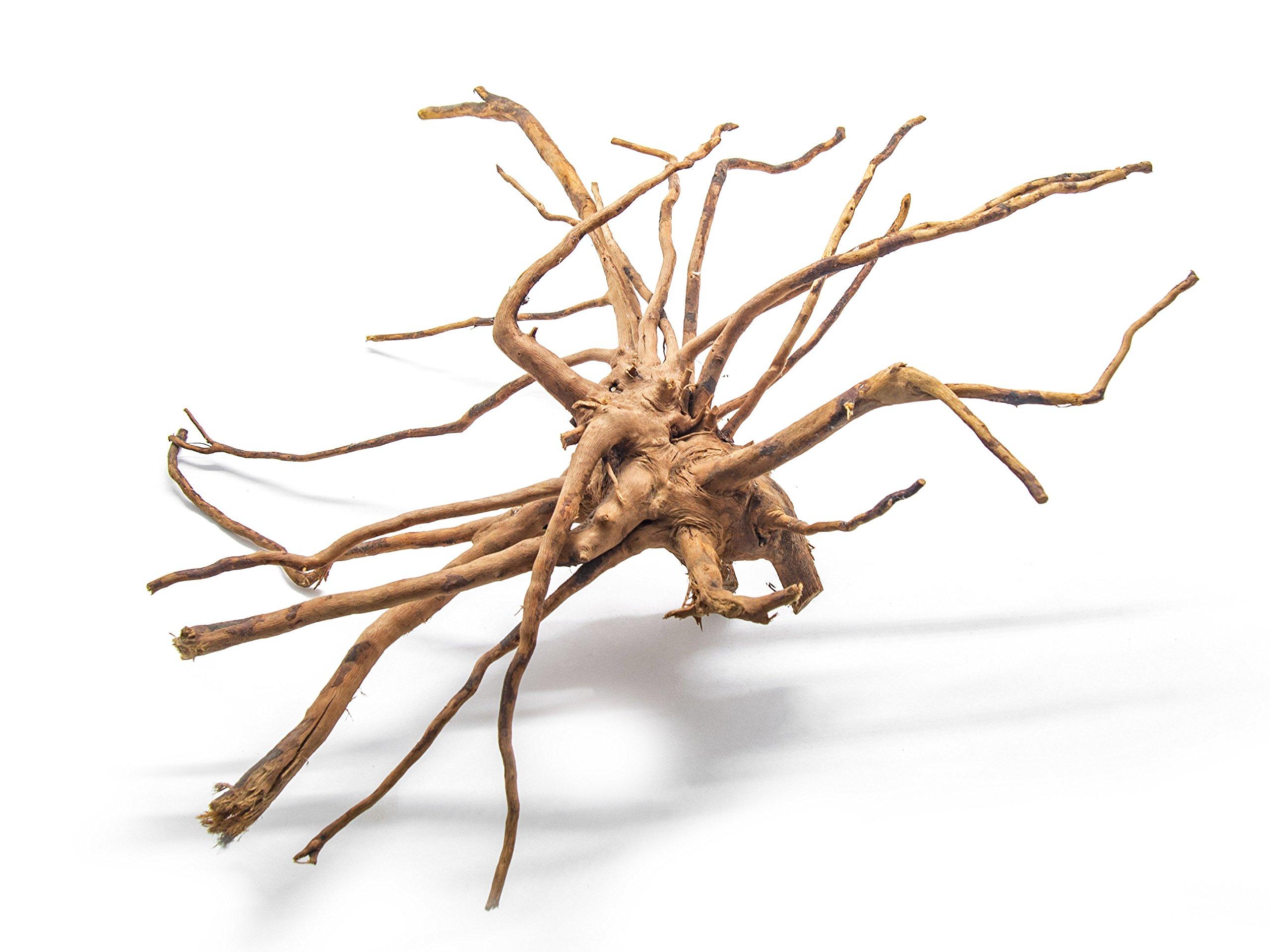 Aquatic Arts 1 Large Piece of Spider Wood aka Azalea Natural Aquarium Driftwood, 14-16''