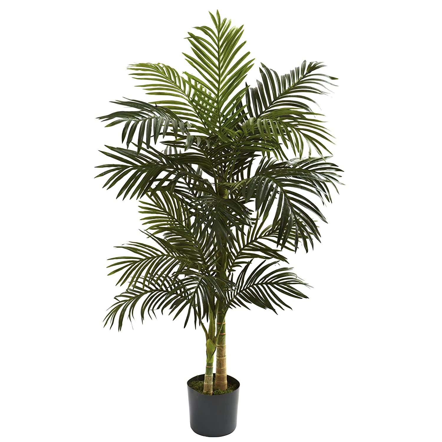 amazon com nearly natural 5358 golden cane palm tree 5 feet