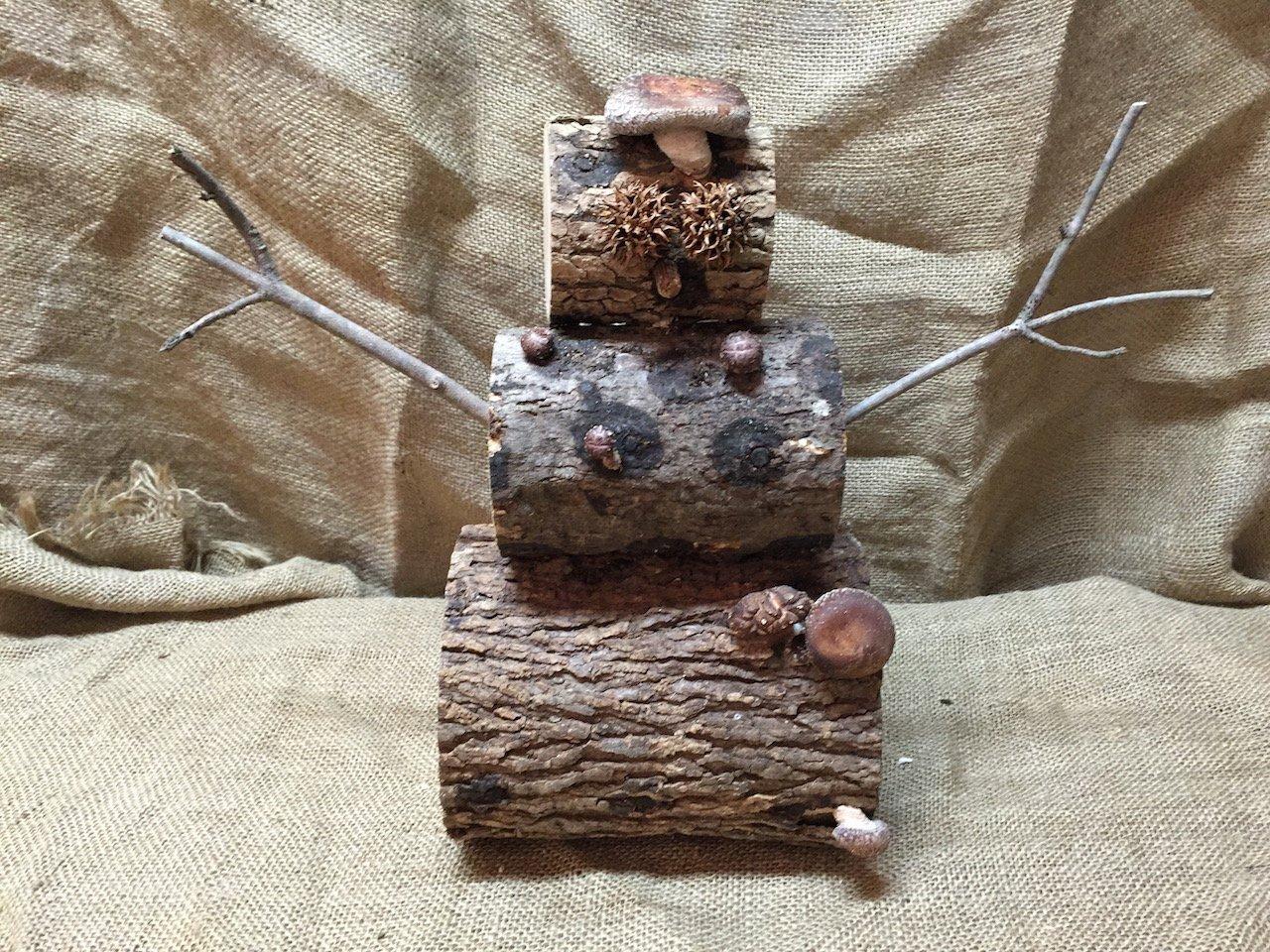 Shiitake Snowman Mushroom Log DIY Shiitake Mushrooms Ready to Grow Your Own