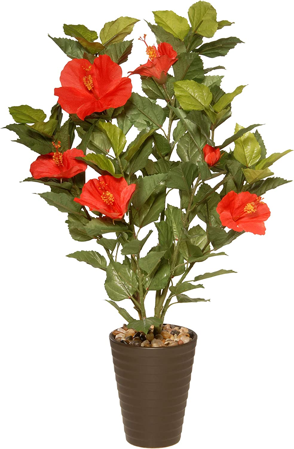 National Tree Potted Hibiscus Plant, 22 Inch, Multi