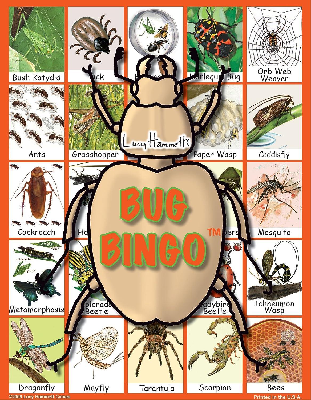 1 X Bug Bingo