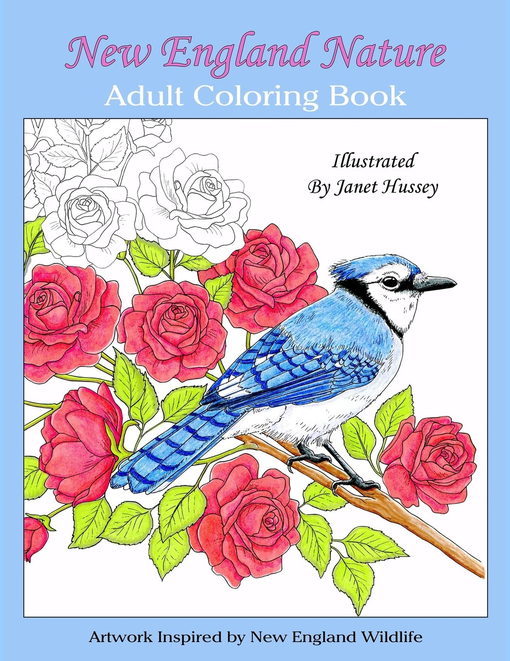 New England Nature: Adult Coloring Book ebook