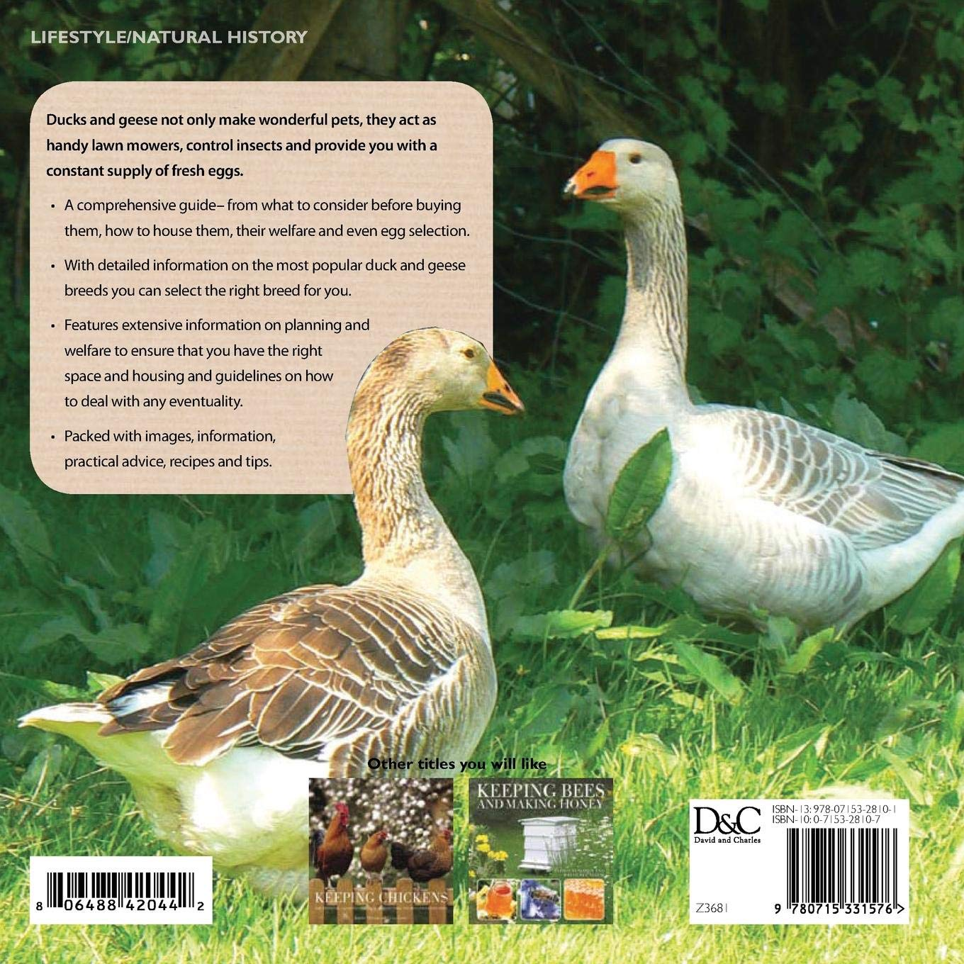 Keeping Ducks & Geese: Chris Ashton, Mike Ashton: 9780715331576:  Amazon.com: Books