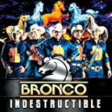 "BRONCO ""INDESTRUCTIBLE"" (NEW ALBUM 2015-2016)"