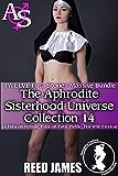 The Aphrodite Sisterhood Universe Collection 14 (TWELVE Futa Stories Massive Bundle): (A Futa-on-Female, Futa-on-Futa, Public, Hot Wife Erotica)