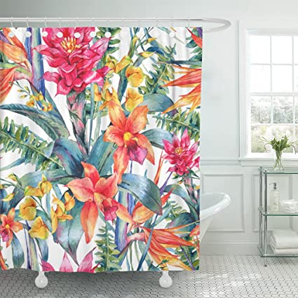 Image Unavailable Not Available For Color TOMPOP Shower Curtain Watercolor Vintage Floral Tropical Exotic Flowers Bird Of Paradise