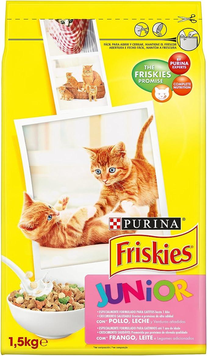 Friskies - Gato Junior con Pollo, Leche y Verduras añadidas ...
