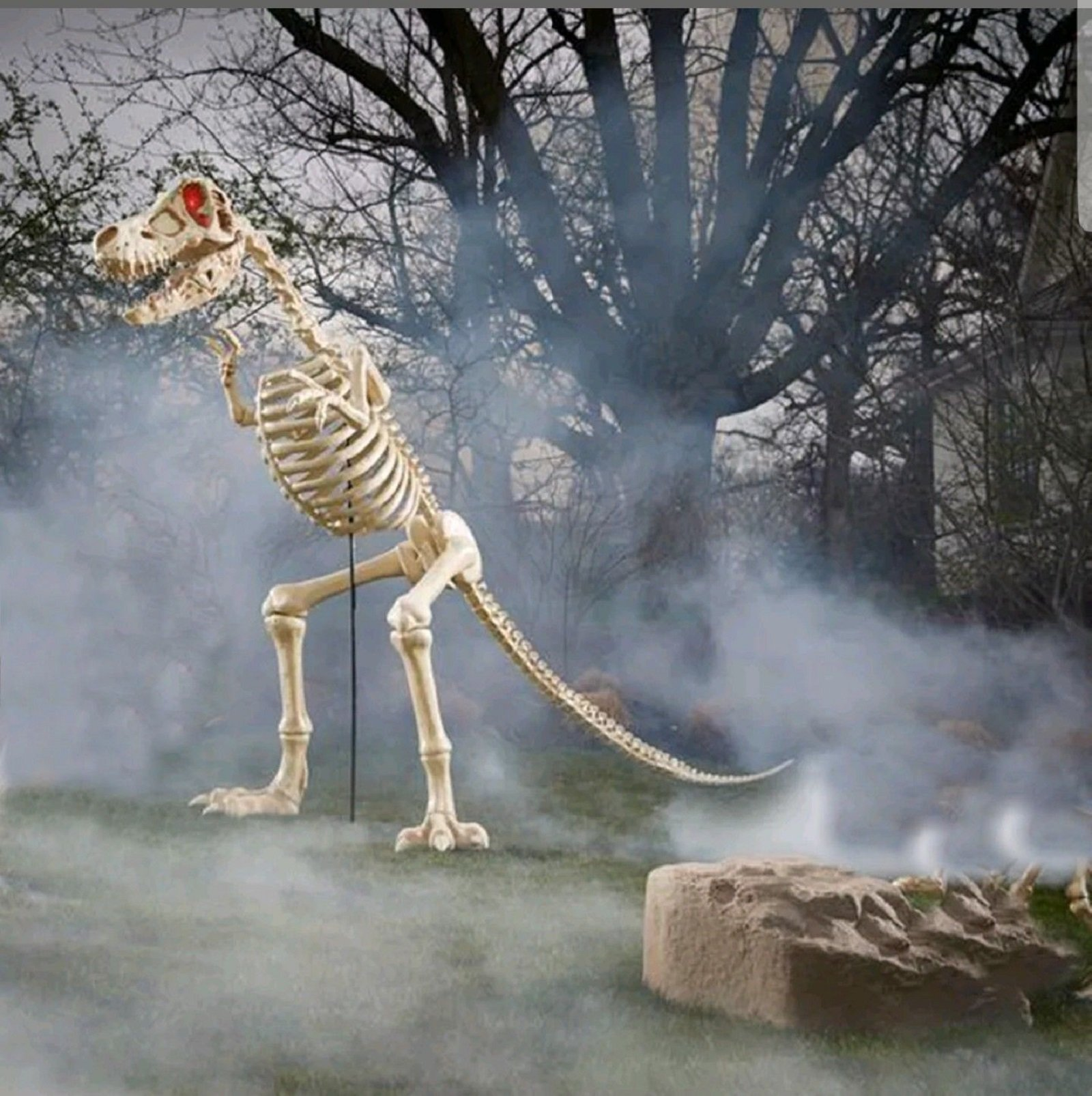 6 ft. Standing Skeleton T Rex Raptor with LED Illuminated Eyes Great halloween Prop by Halloween