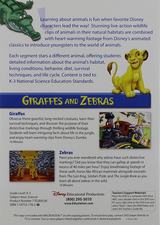 amazon com giraffes u0026 zebras disney u0027s animal world movies u0026 tv
