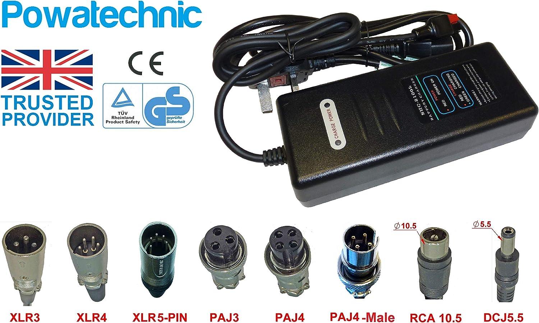24V 2A litio Li-ion, LiFePO4cargador de batería para bicicleta eléctrica Scooter movilidad silla de ruedas silla carrito de Golf carros