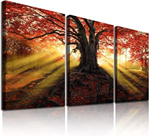 Sdmikeflax 3 Piece Sunset Fall Forest Canvas Wall Art for Living Room Bedroom, HD Foliage Natural Landscape Pictures Printed Artwork, Red Maple Tree Autumn Framed Wall Deocr for Home, 16