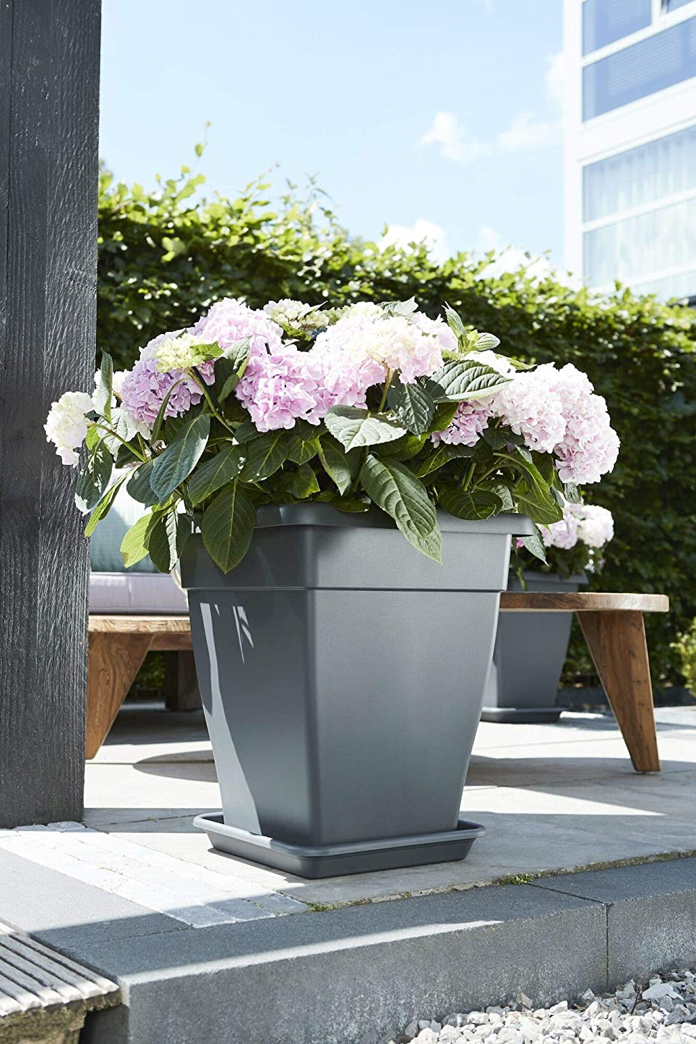Elho Universal Saucer Square 20 Indoor /& Outdoor /Ø 20 x H 3 cm Taupe