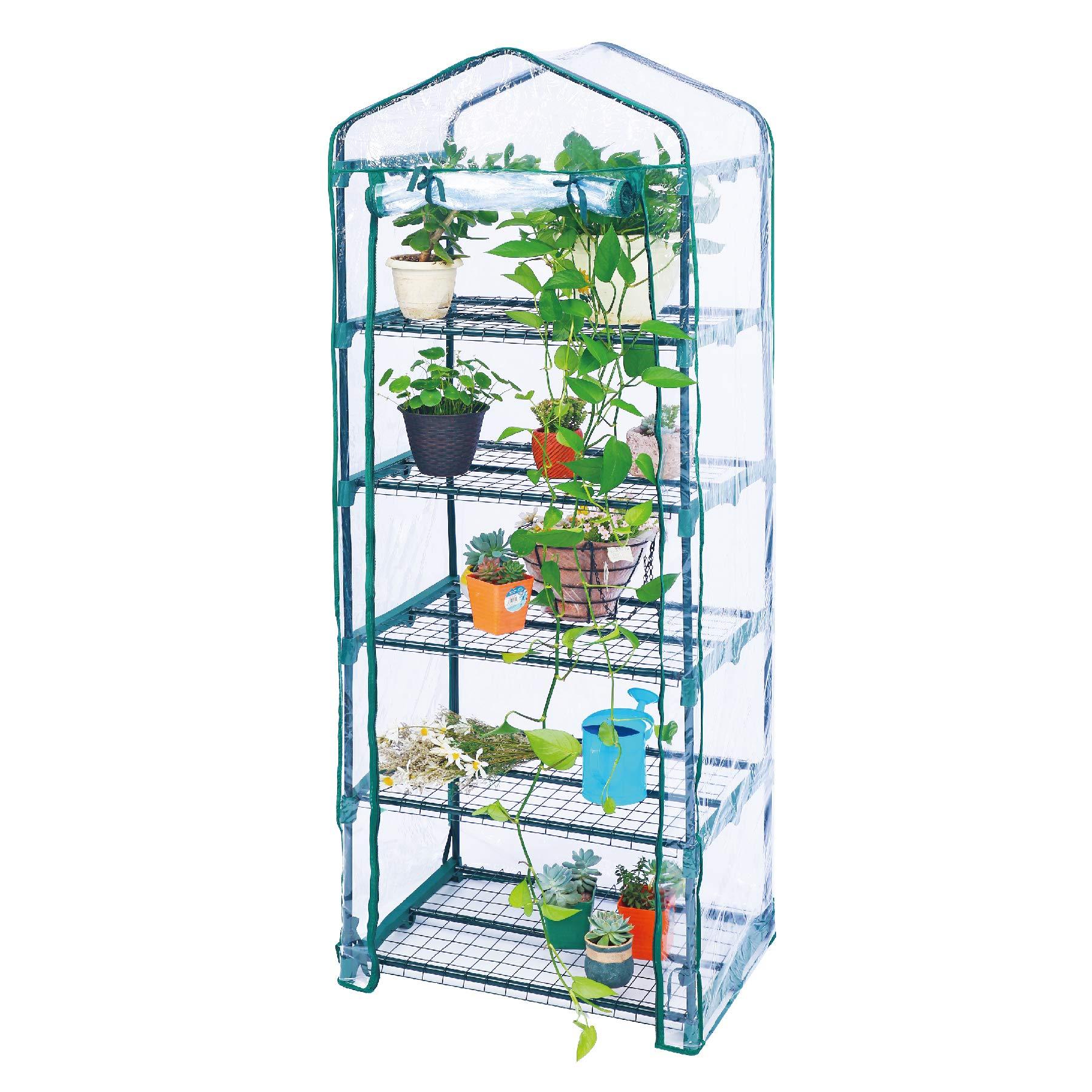 Worth 5-Tier Mini Greenhouse w/Cover 69x49x190CM Green
