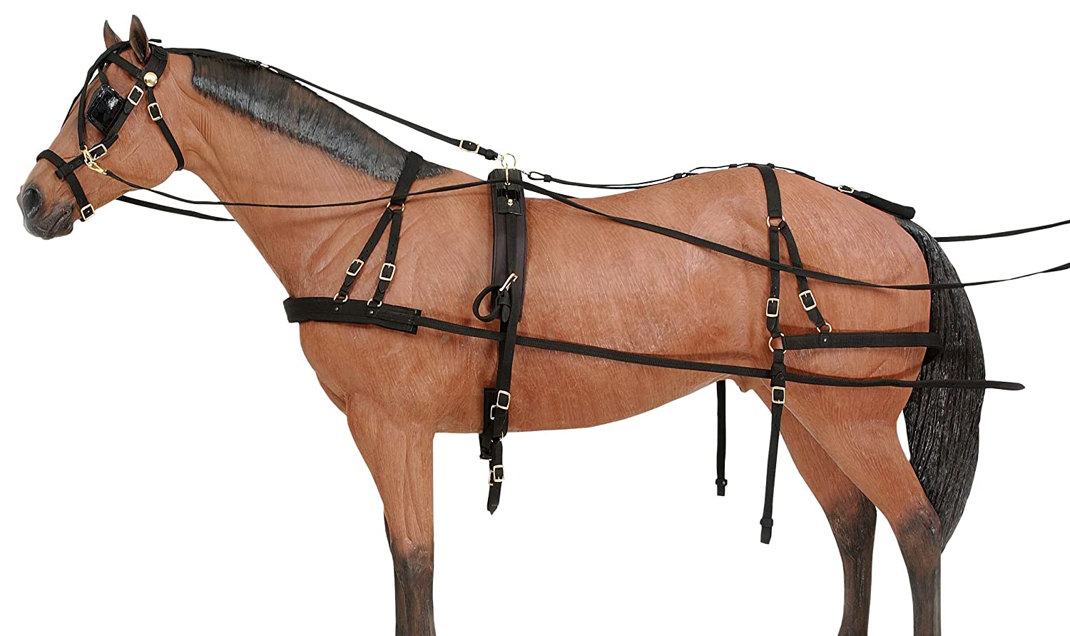 Amazon.com : Tough 1 Deluxe Nylon Driving Harness : Horse Driving Equipment  : Sports & Outdoors
