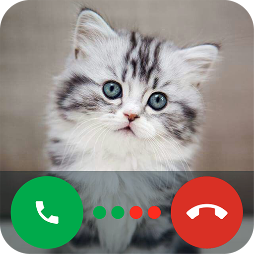 Fake Call from Cat: Calling Kitty Prank and Joke for Kids