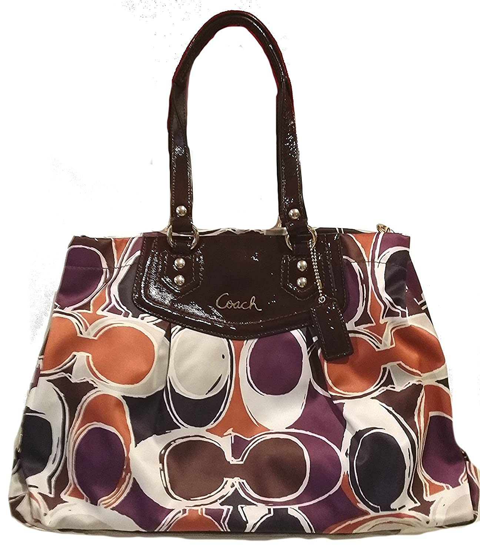 1700e79f7e Amazon.com  Coach Ashley Signature Hand Drawn Carryall Satchel Bag  Shoes