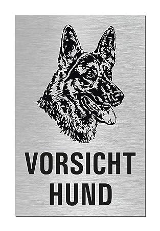 Sparversand Edelstahlschilder-Optik T/ürschild Vorsicht Hund 100 x 60 mm Nr.44663-S Aluminium glashart eloxiert