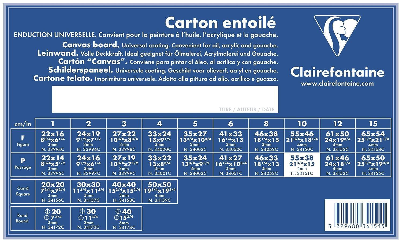 Clairefontaine 34151C Cartone Telato da Dipingere, 55 x 38 cm, Bianco, 1 Foglio