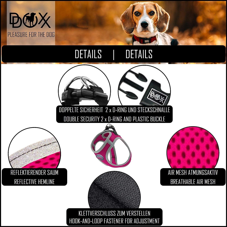 Imbottito DDOXX Pettorina Cane Step-in Air Mesh per Cani Piccoli Medi Grandi S Regolabile Riflettente Giallo Imbracatura Gatti Cuccioli Gatto Piccola Media Grande Tanti Colori e Taglie