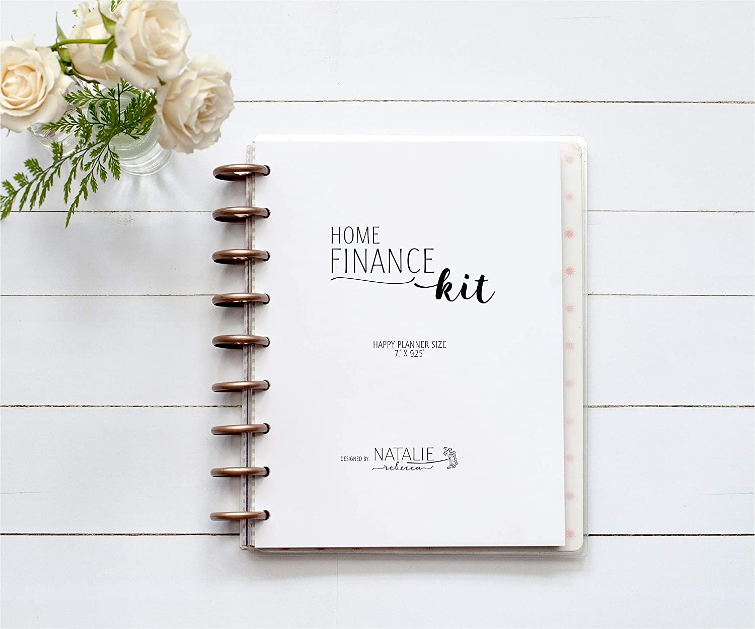 Home Finance Kit for the Happy Planner, 9-Discs, 1 Year Supply, Budget, Expense Tracker, Debt Snowball, 7
